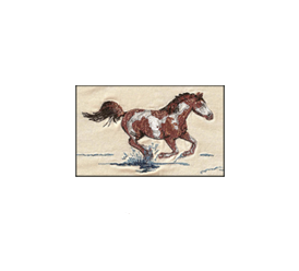 CLUB EQUESTRE DE PADDINGTON